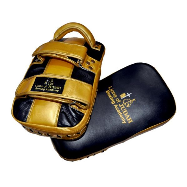 boxing and kickboxing pads - black and gold