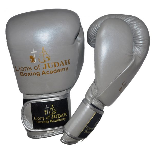 boxing gloves for adults - silver