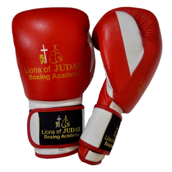 boxing gloves for adults - red