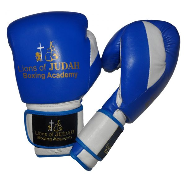 boxing gloves for adults - blue