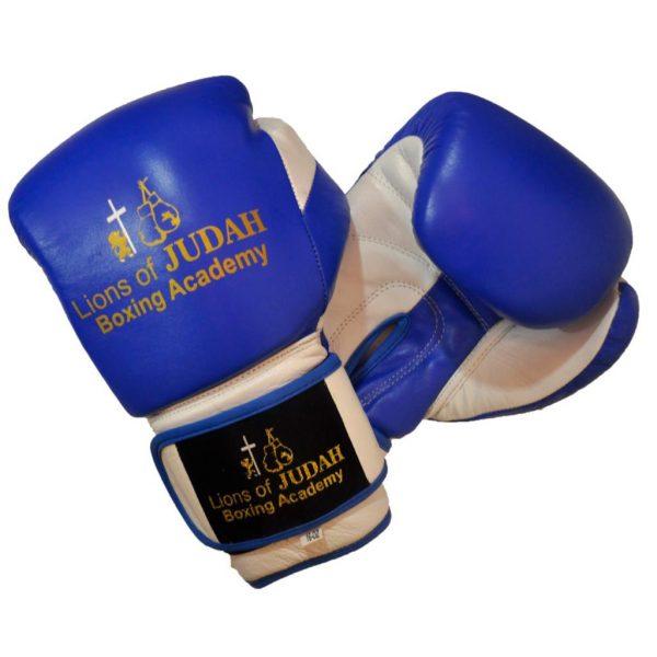 boxing gloves kids blue white