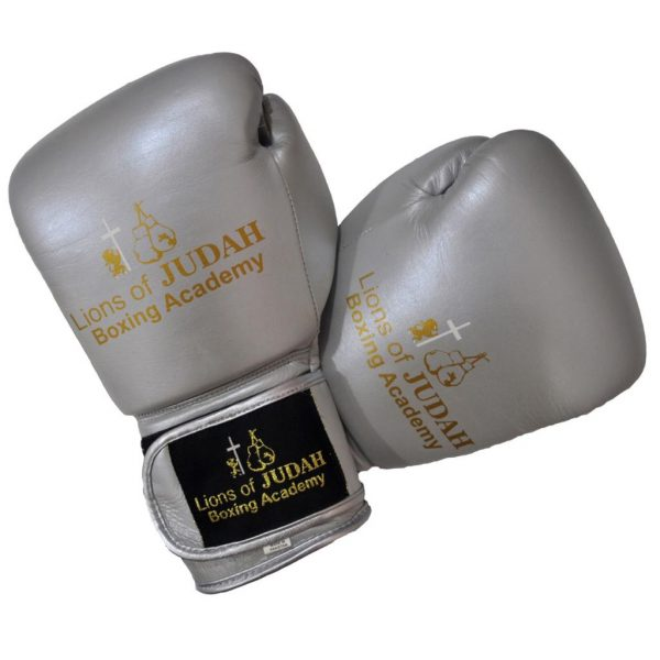 boxing gloves kids silver